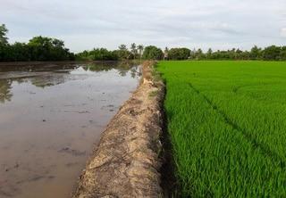 Export système d'irrigation